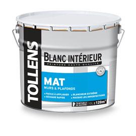Peinture glycero mat tollens resine de protection pour for Peinture special plafond